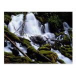 Caídas de Clearwater, bosque del Estado de Umpqua, Tarjetas Postales