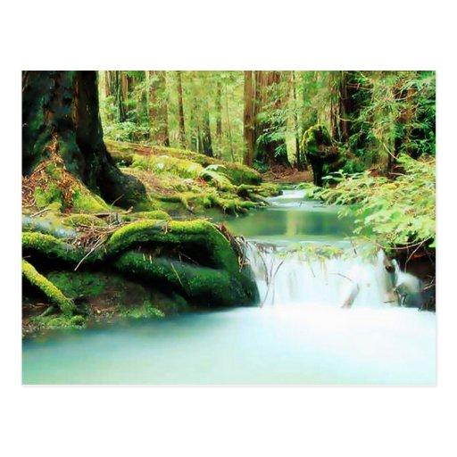Caídas de Green River Postales