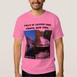 CAÍDAS de la camiseta del LAGO del CAYUGA Polera