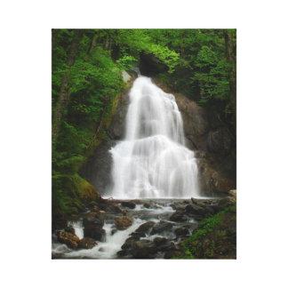 Caídas de la cañada del musgo, Granville, Vermont Impresiones De Lienzo