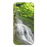 Caídas de la cuesta del musgo iPhone 5 protectores