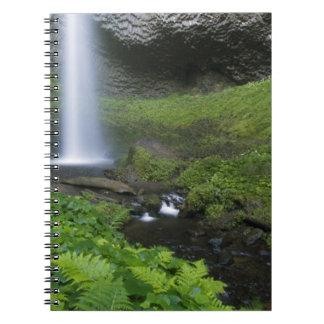 Caídas de Latourell, garganta del río Columbia, Or Cuaderno