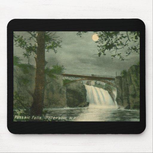 Caídas de Passaic, vintage de Paterson NJ Tapete De Raton