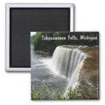 Caídas de Tahquamenon, paraíso, Michigan Imán De Frigorifico