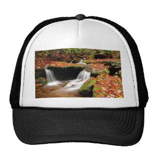 Caídas del agua del otoño gorra