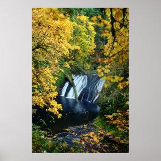 Caídas del otoño impresiones