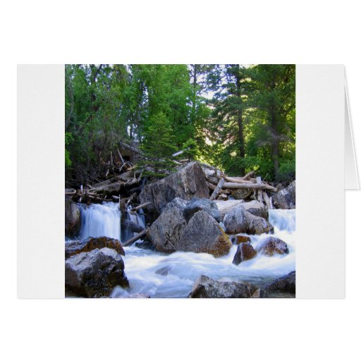 Caídas del río de la montaña del agua tarjeta