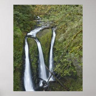 Caídas del triple, garganta del río Columbia Impresiones