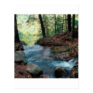 Caídas Delaware Gap New Jersey del suero del río Tarjeta Postal