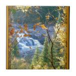 Caídas en otoño azulejo ceramica