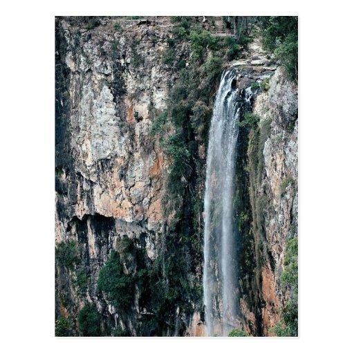 Caídas murmurantes del arroyo, Gold Coast, Austral Tarjetas Postales