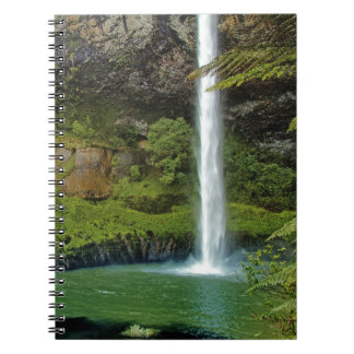 Caídas nupciales del velo, NZ Cuaderno