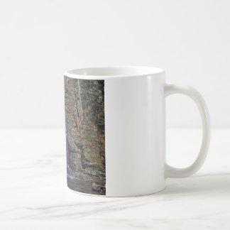 Caídas nupciales del velo tazas de café