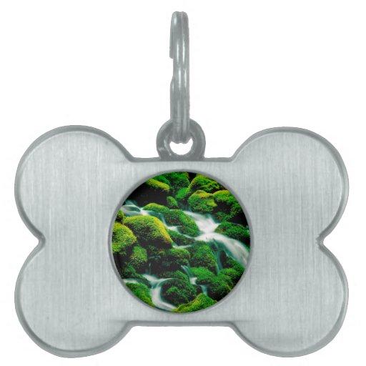 Caídas Oregon del claro del agua Placa De Mascota