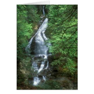 Caídas Stowe Vermont de la cañada del musgo Tarjeta De Felicitación