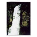 Caídas vernales - tarjeta de Yosemite