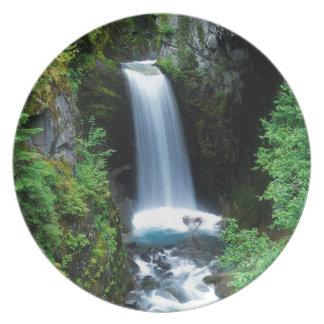 Caídas Washington de Christine del agua Platos