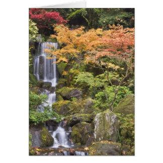 Caídas y colores divinos del otoño felicitación