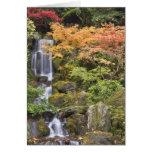 Caídas y colores divinos del otoño tarjeta de felicitación
