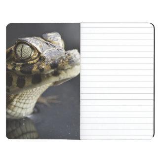 Caimán joven en agua con la reflexión cuadernos grapados