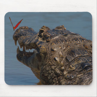 Caiman with a butterfly, Brazil Mouse Pad