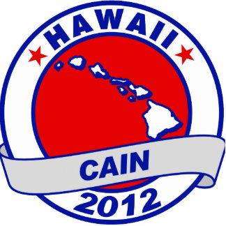 Cain - Hawaii Photo Cut Outs