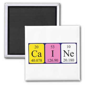Caine periodic table name magnet