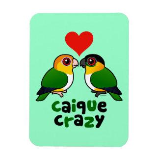 Caique Crazy Rectangular Photo Magnet