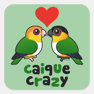 Caique Crazy Square Sticker