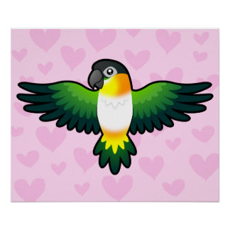 Caique/Lovebird/Pionus/amor del loro Impresiones