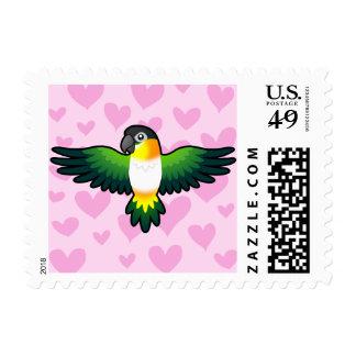 Caique / Lovebird / Pionus / Parrot Love Postage