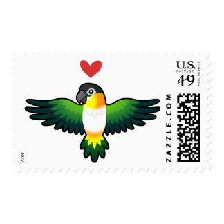 Caique / Lovebird / Pionus / Parrot Love Stamp