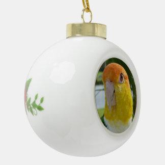 Caique Parrot Ceramic Ball Christmas Ornament