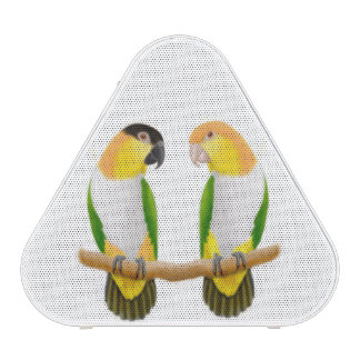 Caique Parrot Love Pieladium Speakers