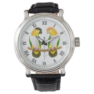 Caique Parrot Love Watch