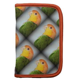 Caique Parrot Planner