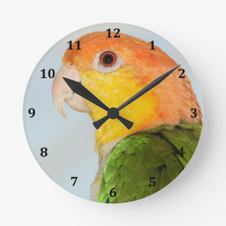 Caique Parrot Round Clock
