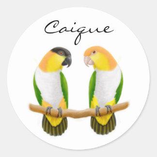 Caique Parrots Sticker
