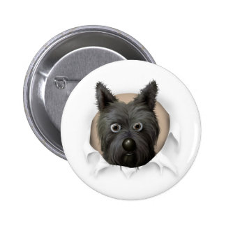 Cairn Terrier 2 Busting Out Pinback Buttons