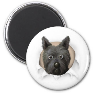 Cairn Terrier 2 Busting Out Refrigerator Magnets