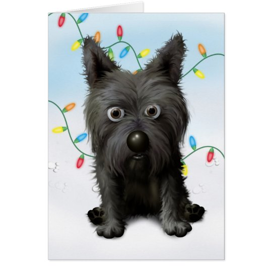 Cairn Terrier 2 Christmas Card