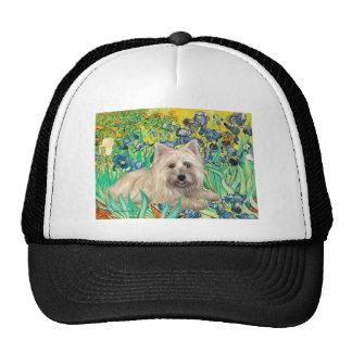 Cairn Terrier 4 - Irises Trucker Hat
