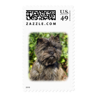 Cairn Terrier 9W048D-142_2 Postage Stamp