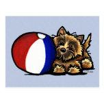 Cairn Terrier Beach Ball Postcard