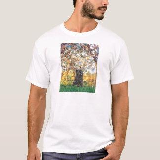 Cairn Terrier (Brindle 21) - Spring T-Shirt