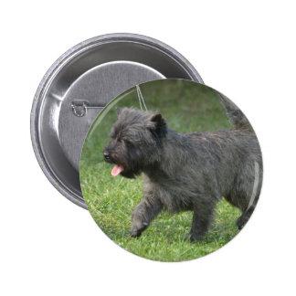 Cairn Terrier Pinback Button