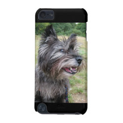 Case-Mate Barely There 5th Generation iPod Touch Case with Cairn Terrier Phone Cases design