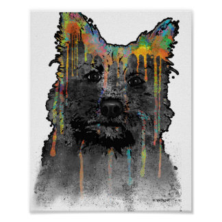 Cairn Terrier Dog Poster