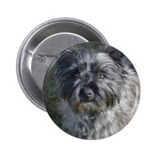 Cairn Terrier Face 2 Inch Round Button