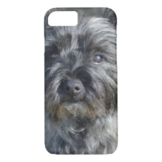 Cairn Terrier Face iPhone 8/7 Case